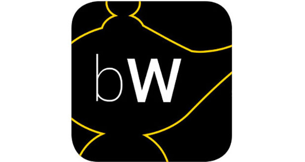 bWindows